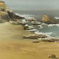 California Coast by Joni Herman