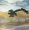 California East Bay Oaks by Janis Commentz
