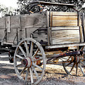California Farm Wagon by Gene Parks