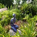 California Garden by Chuck Shafer
