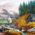 California: Gold Mining by Granger