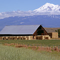 California Hay Barn by Methune Hively