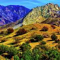 California Hills by Garry Gay