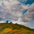 California Hills by Rick Nederlof