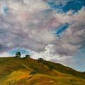 California Hills by Rick Nederlof