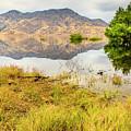 California Kaweah Lake Scene by Ben Graham