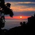 California Mediterranean by E Williams