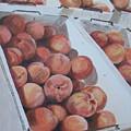 California Peaches by Vera Rodgers
