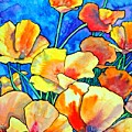 California Poppies by Gail Zavala