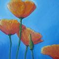 California Poppies by Vesna Antic
