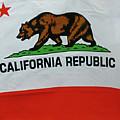 California Republic Flag by Rob Potter
