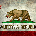 California Republic State Flag Retro Style by Bruce Stanfield