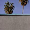 California Rooftop by Deborah Hughes