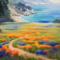 California Spring Big Sur by Karin  Leonard