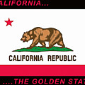 California State Flag by Floyd Snyder