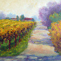 California Wine Country by Carolyn Jarvis