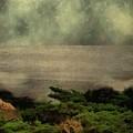 California Zen by RC DeWinter