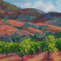 Calistoga Vineyards  by Deirdre Shibano