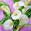 Calla Lillies 3 by Olga Kaczmar