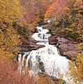 Callasaja Falls- North Carolina 2 by Penny Lisowski