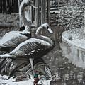 Callaway Mallard Ducks by Beth Parrish