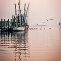 Calm Evening On Shem Creek by Donnie Whitaker