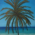 Calm Palm by Wayne Cantrell
