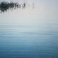 Calm Ripples On The Lake by Parker Cunningham