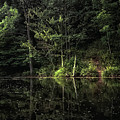 Calm Waters by Elaine Malott