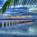 Caloosahatchee Evening by John McCuen