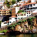 Camara De Lobos On The Island Of Madeira by Brenda Kean