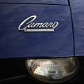 Camaro by Karol Livote