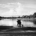 Cambodia: Angkor, 1960 by Granger