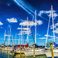 Cambridge Marina by Nick Zelinsky