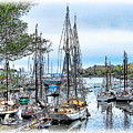 Camden Bay Harbor by Tom Schmidt