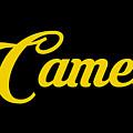 Camel-01 by Omran Husain