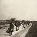 Camel Caravan, C1911 by Granger