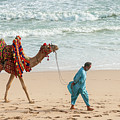 Camel Ride On Beach by Tariq Soomro