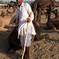Camel Trader Pushkar by Doug Matthews