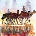 Camelrider by Beena Samuel