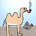 Camels Don't Smoke Pipes by Rob Keay