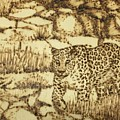 Camouflage by Elizabeth Mundaden