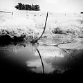 Campaspe River In Black And White by Win Naing