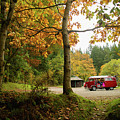 Campervan In The Autumn Woods by Keith Morris