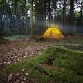 Camping by Dawn Van Doorn