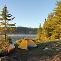 Campsite On Alder Lake by Larry Ricker