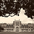 Campus Of Rice University by Mountain Dreams