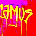 Camus ... Graffitied  by Funkpix Photo Hunter