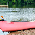 Can You Canoe by Traci Cottingham