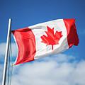 Canadian Flag Flying Proudly by Selinda Van Horn